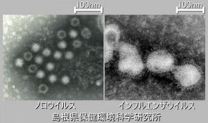 noro&flu3
